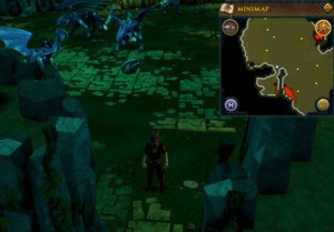 Emote clue Raspberry Dragontooth Isle
