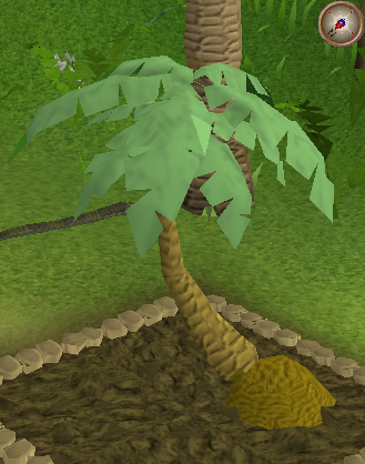 Papaya Trees Osrs Best Tree In The Forest