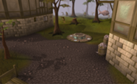 200px-Port Sarim lodestone location