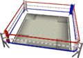 Boxing Ring POH.png