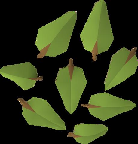 File:Leaves (oak) detail.png