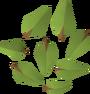 Leaves (oak) detail