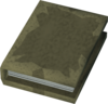 Tome of glorious deeds detail