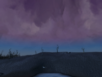 Wilderness skybox