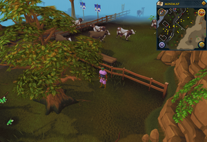 Compass clue Lumbridge south of cow pen