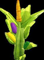 Harvest Festival plant
