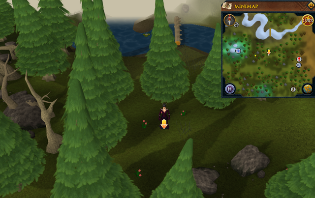 File:Scan clue Tirannwn south of eastern bridge.png