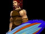 Surfboard Shield