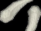 Polished sabre-like teeth