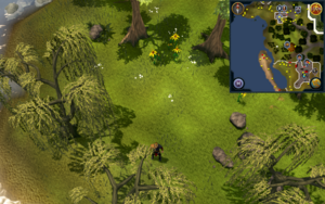 Compass clue Falador north-west of Crafting Guild