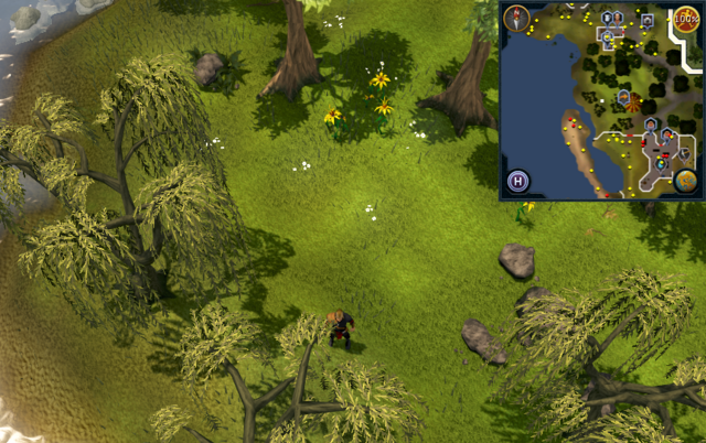 File:Compass clue Falador north-west of Crafting Guild.png