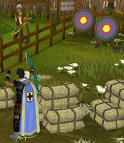 Range guild minigame