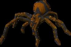 Fever Spider