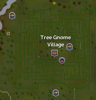 Tree Gnome Village map