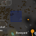 Demon Flash Mob (Graveyard of Shadows) location.png