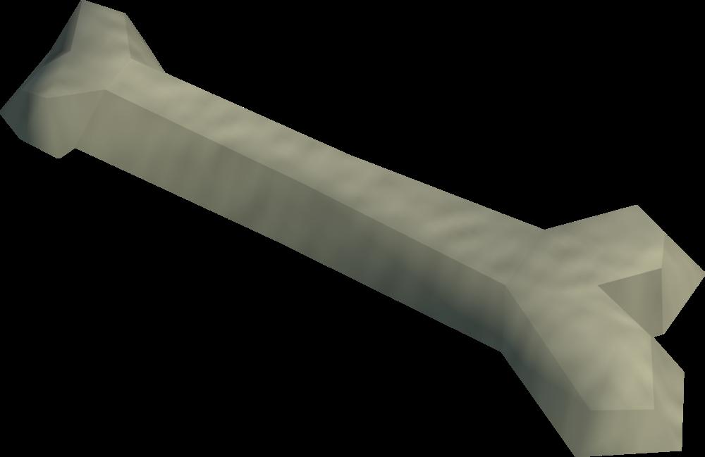 Image Humerus Bone Detailg Runescape Wiki Fandom Powered By