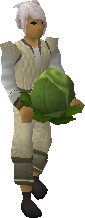 Cabbage (April Fools) equipped