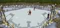 Ice skating.png