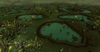 Mort Myre Swamp
