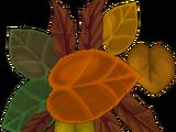 Fallen leaves (2016)