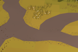 NXT Terrain blending Off