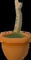 Oak sapling detail.png