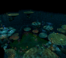 Polypore Dungeon resource dungeon
