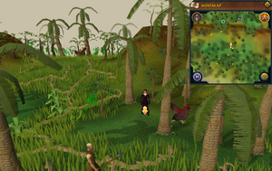 Scan clue Kharazi Jungle south-west of musician
