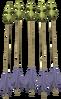 Zephyrium arrows detail
