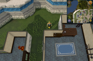 Scan clue Falador northwest flynns mace shop