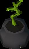 Bagged magic tree detail