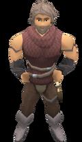 Chief Thief Robin