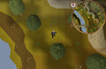 Compass clue Lumbridge west of cow pen.png