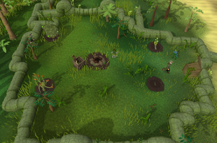 Herblore Habitat centre camp