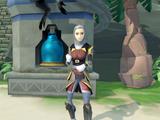 Elite Dungeon Aminishi Reward Shop