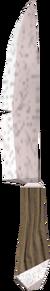 Knife (Dungeoneering) detail