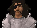 Sir Vyvin