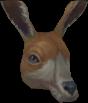 Kangali chathead