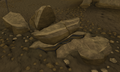 Concentrated coal rock.png