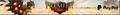 Premier club 2015 2 lobby banner.png
