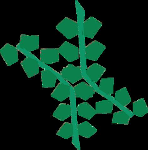 File:Seaweed detail.png