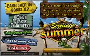 Sizzling Summer banner