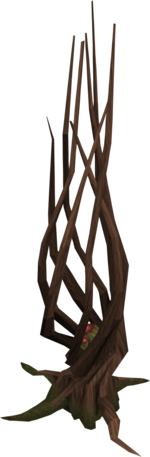 Achey tree