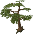 Green tree.png
