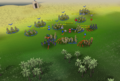 Mobilising armies closeup.png