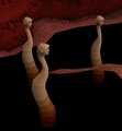 Tolna (Monster).png