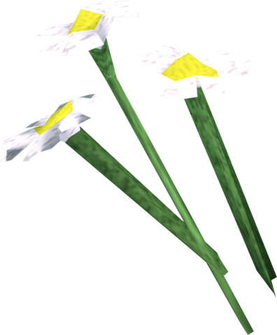 File:White flowers detail.png