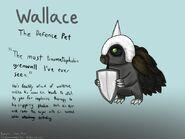 Wallace arte conceitual