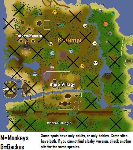 Runescapekaramjageckosafm5