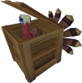 Turkey in crate